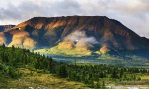Why Alaska Is a Must to Visit