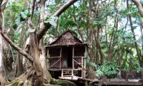 5 Adventures to Take in Dominica