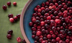 5 Foods Highest in Antioxidants