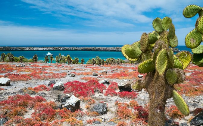 Beautiful landscape of Galapagos via Shutterstock*