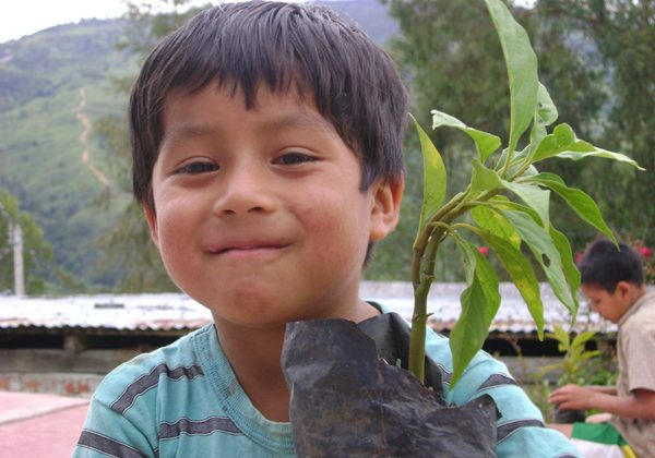 A child with a seedling in La Espearnza, part of the communal reforestation efforts. Photo: Noga Shanee/NPC