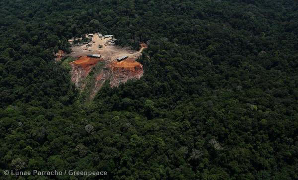 Odani sawmill in the middle of the Amazon. A Greenpeace report alleges that this sawmill, and several others, are sourcing illegal timber. Photo by: © Greenpeace.