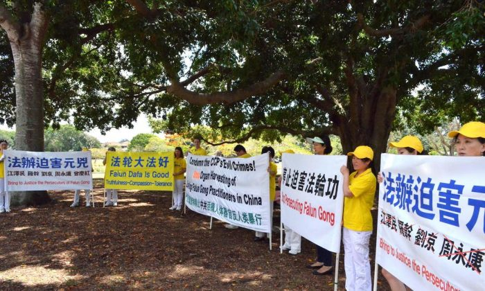 Falun Gong practitioners hold signs calling for an end to the persecution of the spiritual discipline in China, in Brisbane, Australia prior to the G20 Summit. Practitioners held signs like these on the roadside as Chinese Communist Party leader Xi Jinping's motorcade sped past, going from Brisbane to Canberra. (Minghui.org)