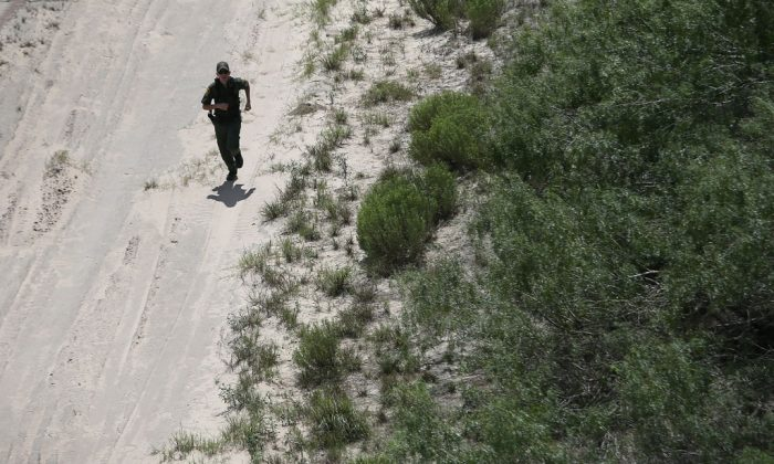 A US Border Patrol agent chases down undocumented immigrants on Sept. 11, 2014, near Falfurrias, Texas. Agents from US Customs and Border Protection patrol the area day and night in search of smugglers bringing both illegal immigrants and drugs into the US. (John Moore/Getty Images)