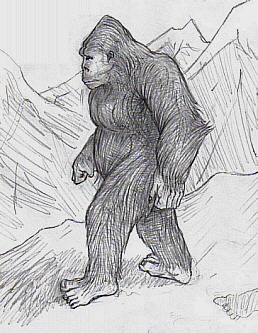Drawing of Yeti (Wikimedia Common)