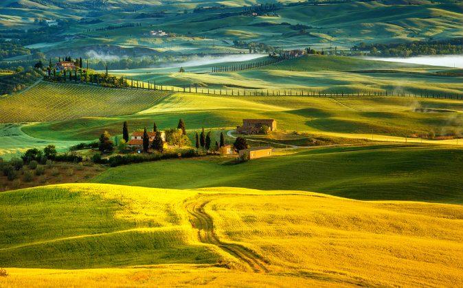 Landscape in Tuscany via Shutterstock*