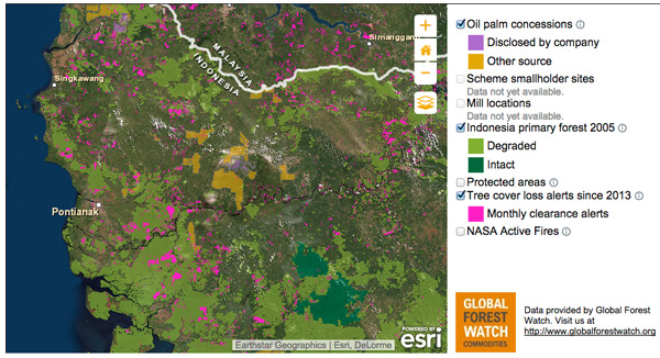 Screenshot of the mapping function of the Sustainable Palm Oil Transparency Toolkit, powered by ESRI. Click image to enlarge. -