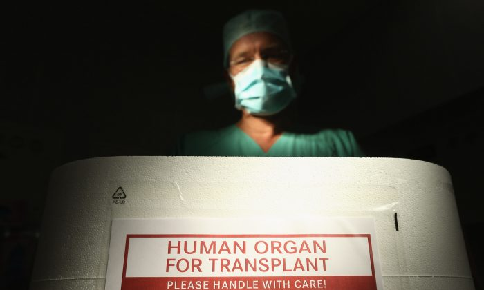 A doctor stands over an empty Styrofoam box used for transporting human organs as part of a media event in an operation room at the Vivantes Neukoelln clinic on Sept. 28, 2012, in Berlin, Germany. (Sean Gallup/Getty Images)