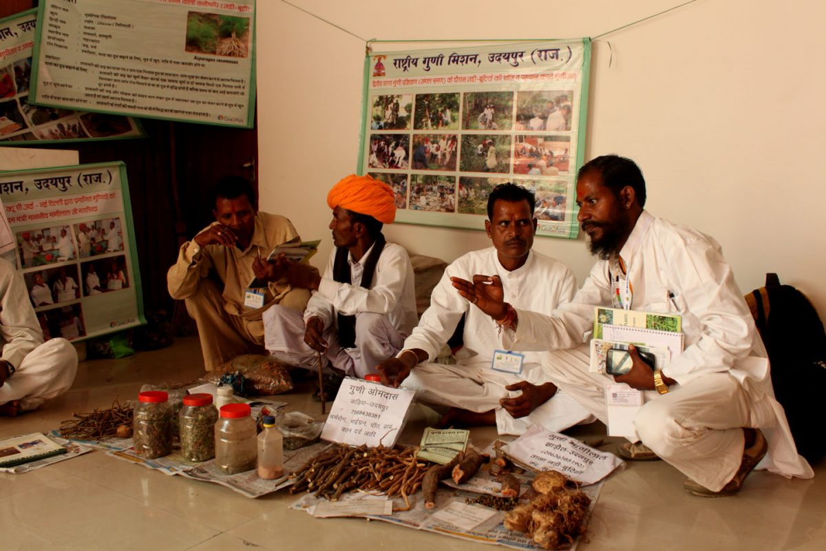 promote traditional indian medicine - HD 1440×960
