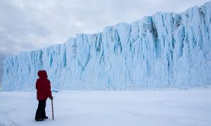 Film Review: 'Antarctica: A Year on Ice'