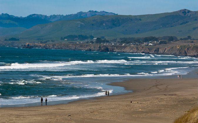 Sonoma Coast State Beach via Shutterstock*