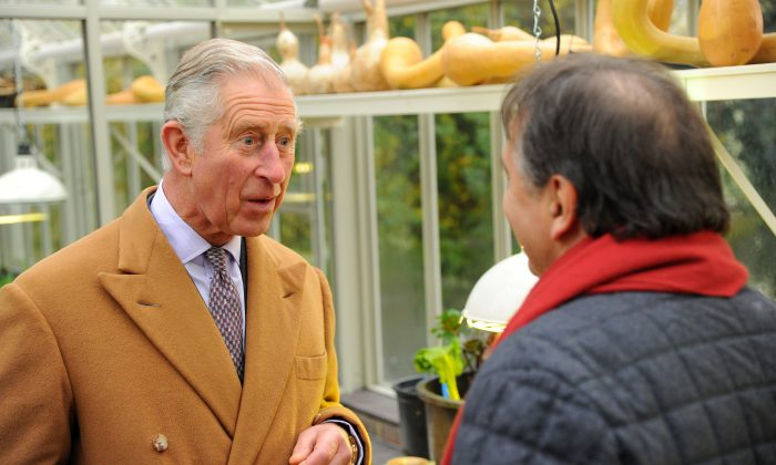 Prince Charles, Prince of Wales at The National Heritage Garden, where he was given a tour by Raymond Blanc at Belmond Le Manoir aux Quat'Saisons on November 21, 2014 in Great Milton, England. (Photo by Eamonn M. McCormack/Getty Images)