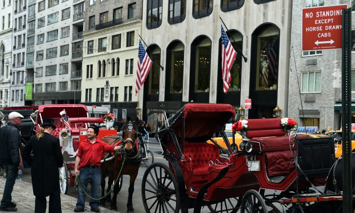 A group of horse carriage drivers to a break on 59th Street April 22, 2014 in New York. (Don Emmert/AFP/Getty Images)