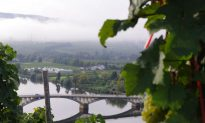 Wine Legends of the Mosel – Old and New
