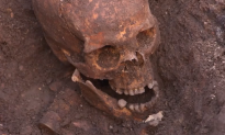 Skeleton Remains Officially Declared to be King Richard III's (Video)