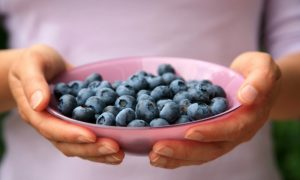 Blueberries Reduce Body Fat and Lowers Diabetes Risk