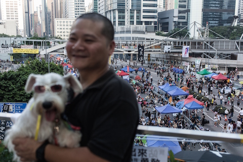 A tourist poses with his dog on a footbridge above a barricaded main road occupied by pro-democracy protestors in the Admiralty district of Hong Kong on Oct. 11, 2014. (Anthony Wallace/AFP/Getty Images)