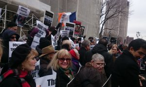 Horse Carriage Ban Supporters Celebrate Introduction of Bill