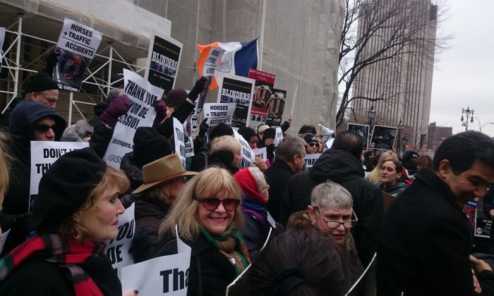 Supporters of the horse-drawn carriage ban bill rally at City Hall in New York on Dec. 8, 2014. (Catherine Yang/Epoch Times)