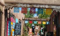 Top 6 Things to Do in Albuquerque, New Mexico