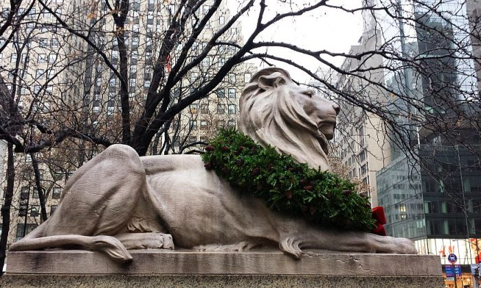 A lion statue at the New York Public Library, wearing a Christmas wreath on Dec. 6. (Mary Silver/Epoch Times)
