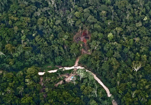 Illegal logging road through the Murunahua reserve for isolated indigenous peoples. Image © Chris Fagan of Upper Amazon Conservancy (UAC).