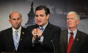 Cruz Forces Vote on Immigration Order