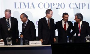 UN Climate Deal Reached: Expectations Different for Poor, Rich Nations