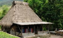 Bajawa Day Trip: Volcanoes, Traditional Villages, and Hot Springs