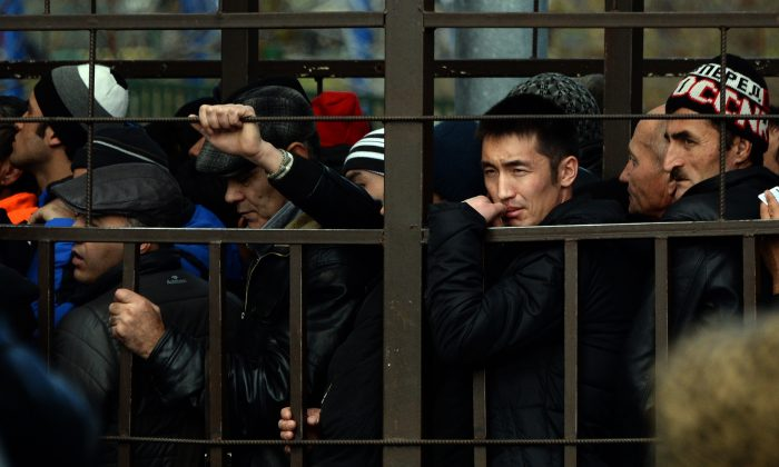 Migrant workers lining up in a fenced holding area outside Moscow's Federal Migration Service office as they wait for their turn to get a work permit on Oct. 25, 2013. (Vasily Maximov/AFP/Getty Images)