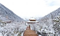 Winter Verses From the Tang Dynasty