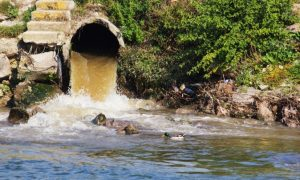 There's No Evidence That Sewage Isn't Teeming With Ebola Virus, According to Researchers Disputing WHO's Claims