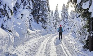 Top 19 Places in Canada for Cross-country Skiing