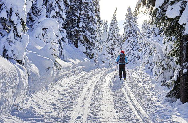 Cross-country skiing in Peter Lougheed Park (Leigh McAdam, Hike BikeTravel)