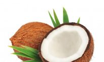 Can Coconut Fat Keep Brains From Aging Too Fast?