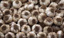 Things You Should Know About Garlic – DIY, Recipes and More
