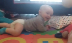 Baby Can't Stop Laughing at New Toy (Video)
