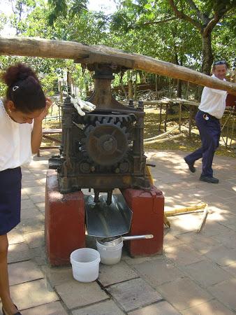 Producing sugar cane juice (Imperator Travel)