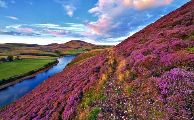 Pentland hills, Edinburgh, Scotland via Shutterstock*