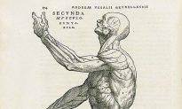 Andreas Vesalius: The Man Who Revolutionized Our Knowledge of the Human Body