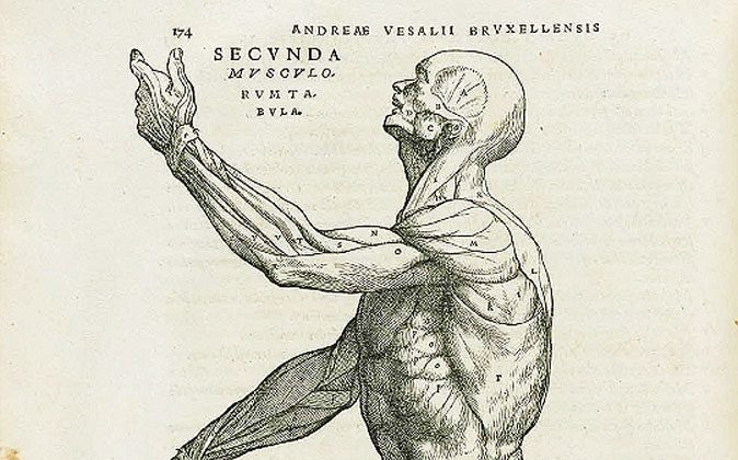 Drawn directly from the flesh. (Public Domain Review/Flickr, CC BY-SA)