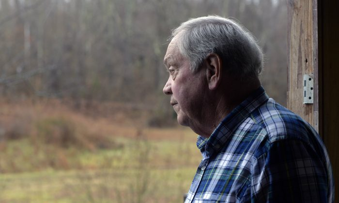 Larry Wilkins looks out in the direction of a plane crash, Saturday, Jan. 3, 2015, in Kuttawa, Ky. A 7-year-old girl, the lone survivor of the crash, walked approximately three quarters of a mile through heavily overgrown woods to Wilkins' home, where he called for assistance. (AP Photo/Timothy D. Easley)