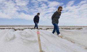 Nebraska Court Could Hold Up Keystone Oil Pipeline