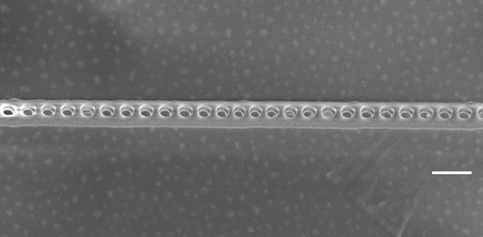 A scanning electron microscope image of the diamond photonic cavity shows the nanoscale holes etched through the layer containing NV centers. The scale bar indicates 200 nanometers.  (Evelyn Hu/Harvard)
