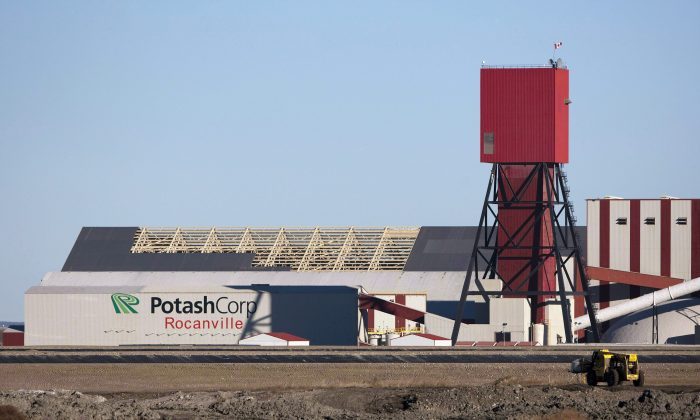 A view of the Potash Corp. plant near Rocanville, Sask. in Canada on Nov. 3, 2010. (The Canadian Press/Troy Fleece)