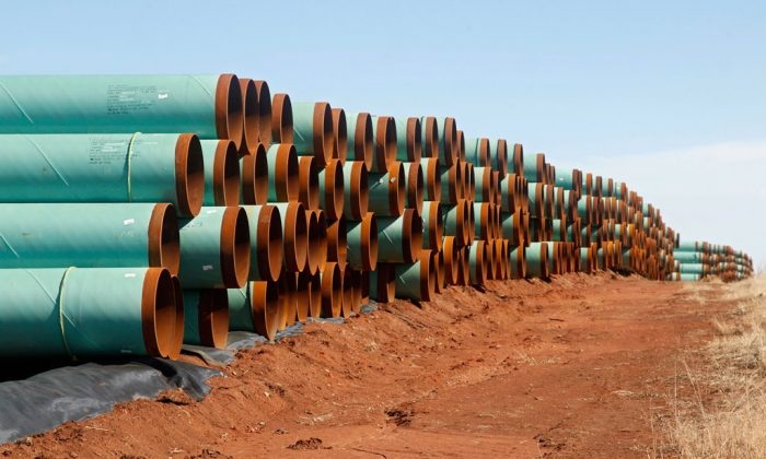 Miles of pipe ready to become part of the Keystone Pipeline are stacked in a field near Ripley, Okla., on Feb. 1, 2012. (AP Photo/Sue Ogrocki)