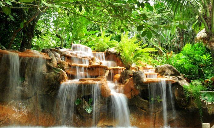 Hot springs in Costa Rica via Shutterstock*