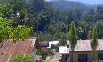 Indonesia: Sulawesi Community Regains Forest Rights