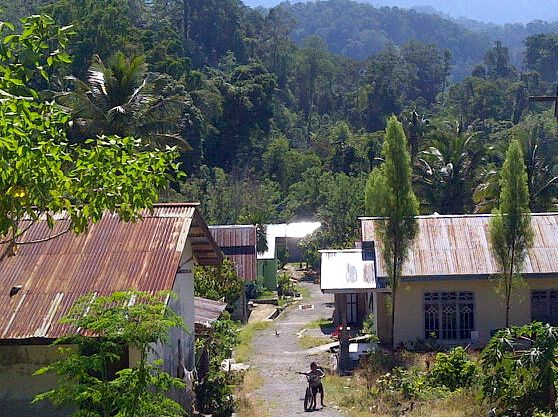Namu village is surrounded by forested hills between Lore Lindu National Park and a conservation forest. They recently regained access to the forest, which they depend on for their way of life. Photo by Syarifah Latowa.