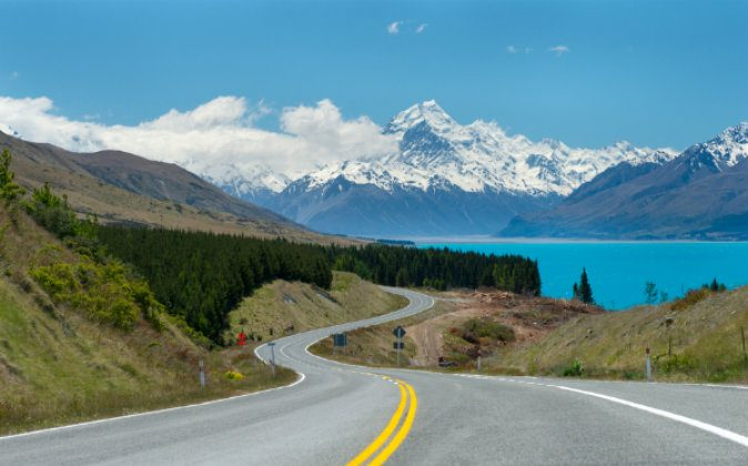 Mt.cook, Lupines fields, South island New Zealand via Shutterstock*